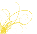 File:Yellowcurl.png