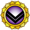 Membership Merit Gold 300.png